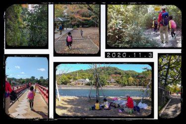 【ハイキング】天ヶ瀬ダム~大吉山~平等院鳳凰堂(2020年11月3日)